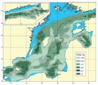 Распределение органического углерода в верхнем слое донных осадков (0-5 см) Балтийского моря