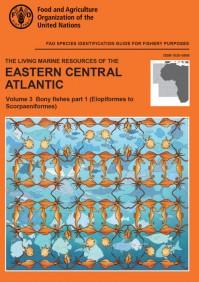 Определитель рыб центрально-восточной Атлантики