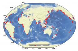 Распространение двустворчатых моллюсков плиокардиинв Мировом океане