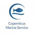 Copernicus Marine Service Online Training Workshop for the Mediterranean Sea